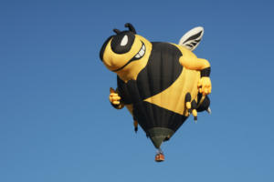 Balloon Fiesta 3202