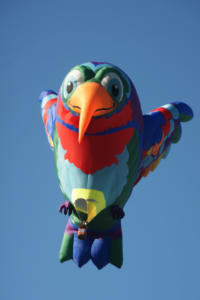 Balloon Fiesta 3209