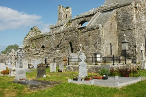 Ireland: Retired Abbey